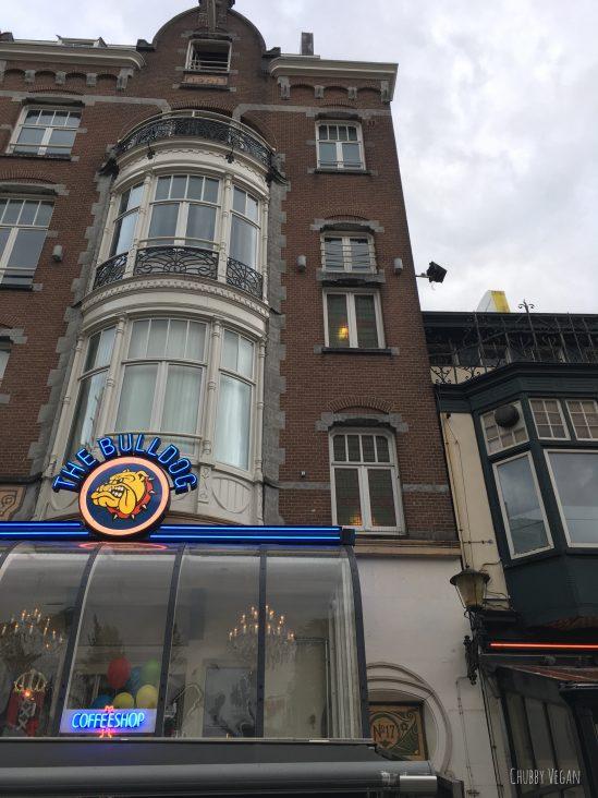 Dicas de Viagem Vegana - Amsterdam - Chubby Vegan (bulldog)